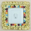 light switch cover STL-1013